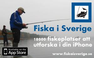 Fiska i Sverige-banner